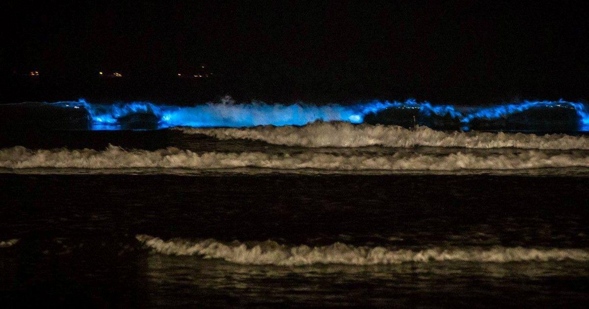 #Espuma cria 'fantasma' em onda azul e imagem viraliza nas redes sociais - Globo.com: Globo.com Espuma cria 'fantasma' em onda azul e…
