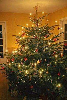 Old Fashioned Christmas Tree Decorations.Old Fashioned Christmas Tree With Candles Instead Of Lights
