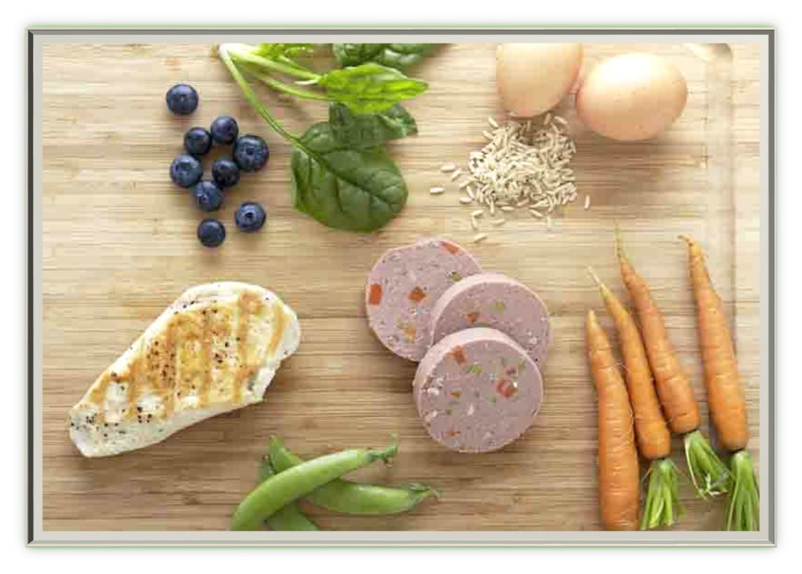 For a healthy nutritious diet give your dog fresh pet