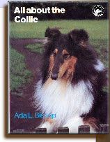 Terry Robinson's portrait of Ch Laund Luscombe, owned and bred by the author, and featured on the Dust Jacket of the larger format 2nd edition of Ada L. Bishop's 'All About the Collie' - 1980. A fitting tribute to a great collie kennel considering Luscombe was the last Laund owned collie to gain its UK title.