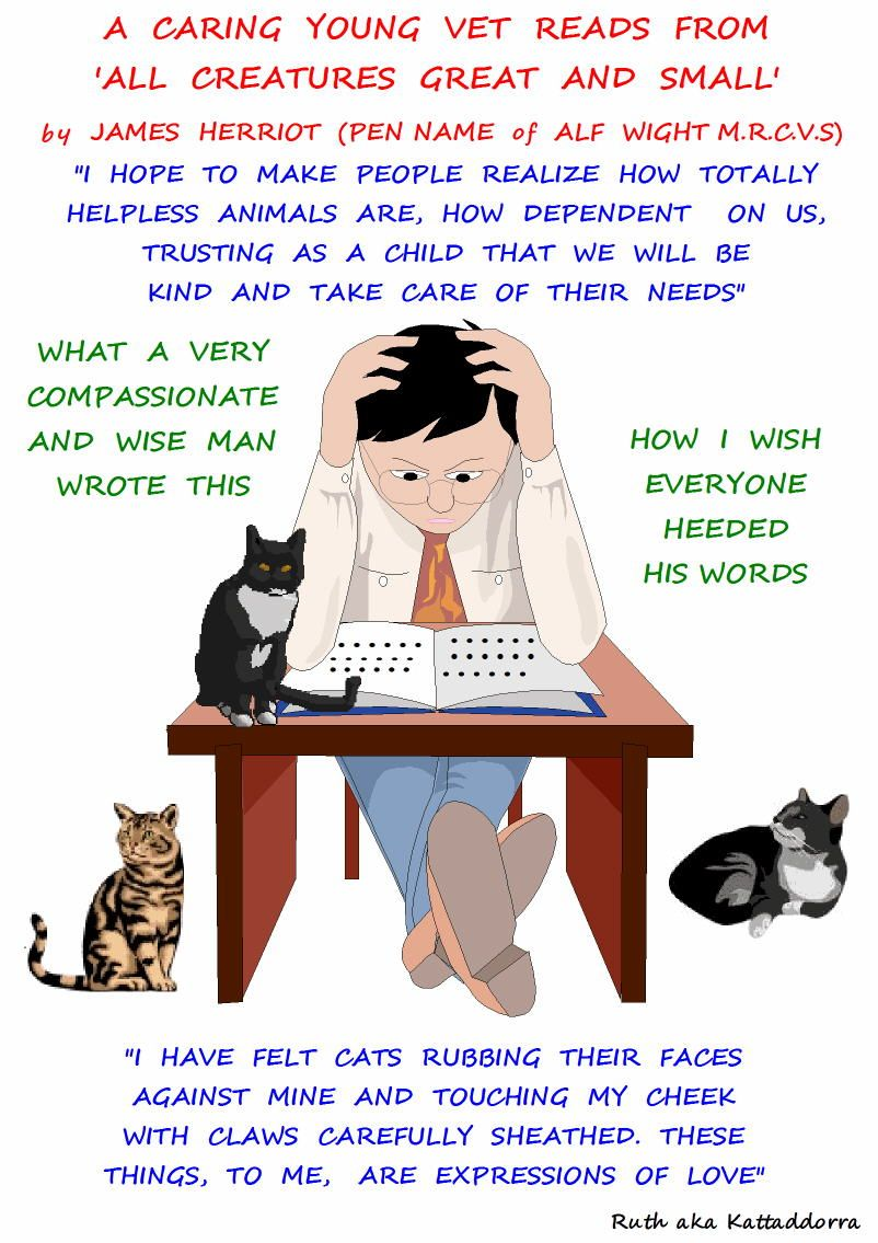 The Compassionate Veterinarian Poc Animal Lover Veterinarian Veterinarian Quotes