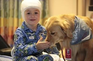 Petsmart To Fund Animal Therapy Program At Phoenix Children S Hospital Therapy Animals Child Life Specialist Work With Animals
