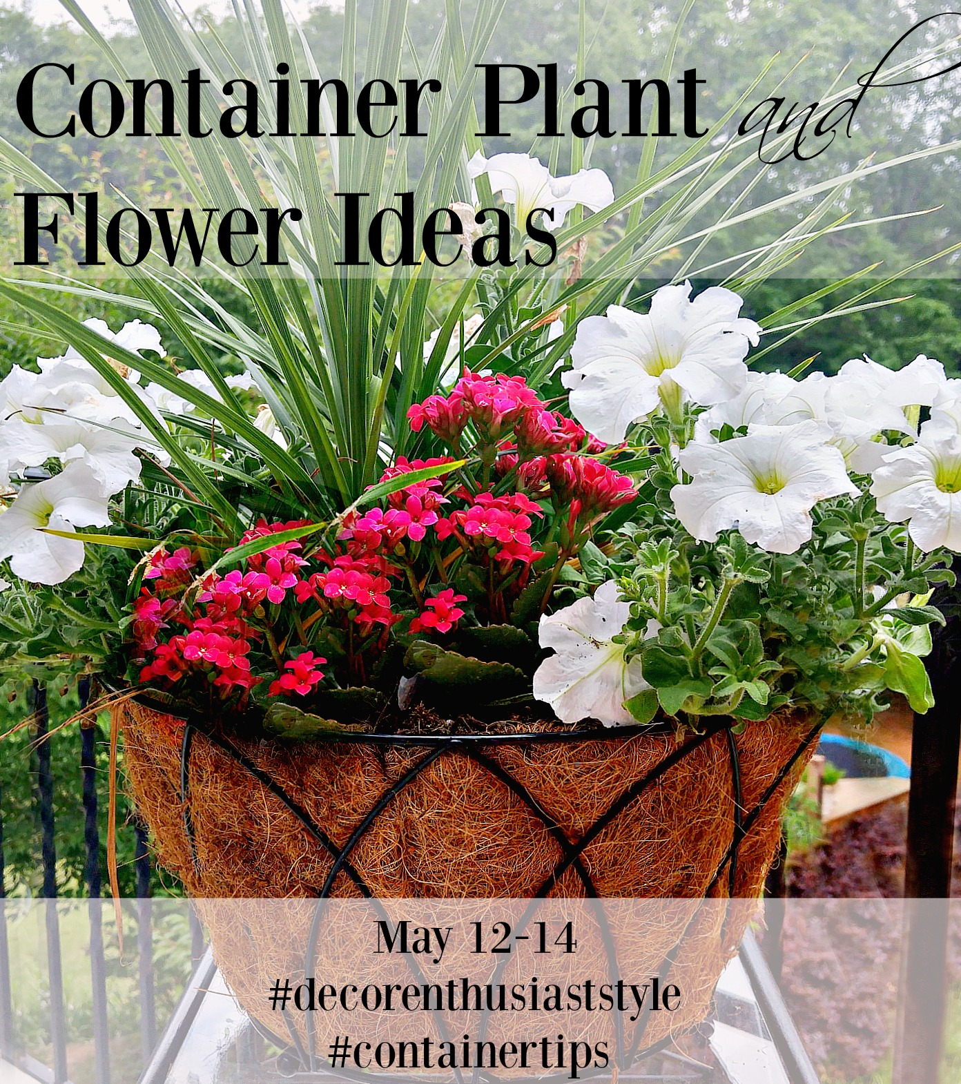 Getting The Most Out Of Your Gardening... Using Containers