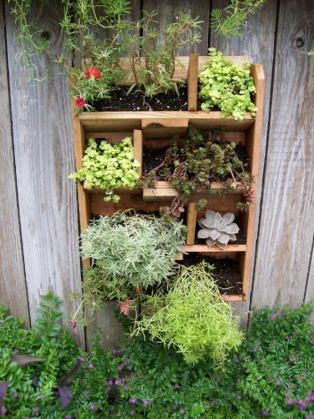 Vertical gardening takes plants to new heights Garden Pinterest