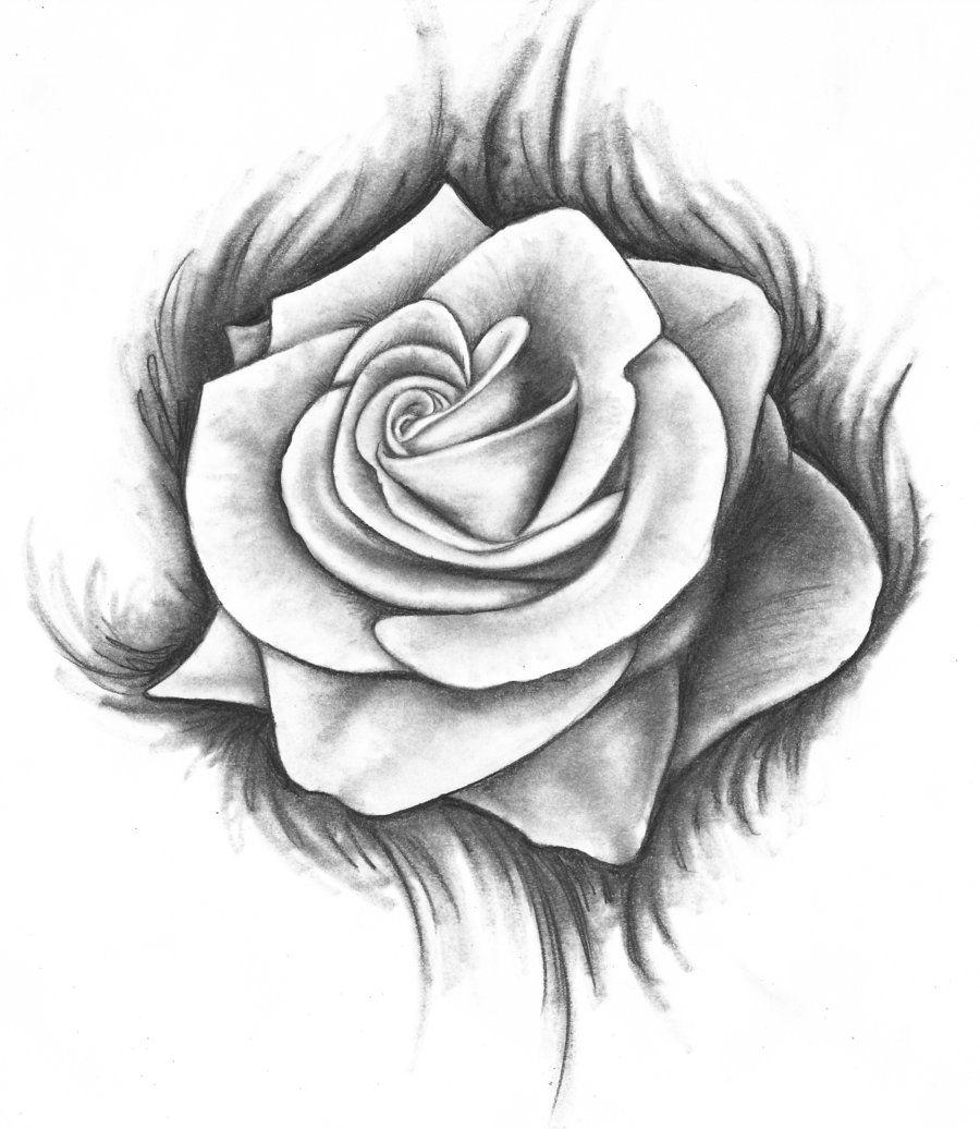 deviantART: More Like Bleeding Rose by PinkRoseBud | Art ...