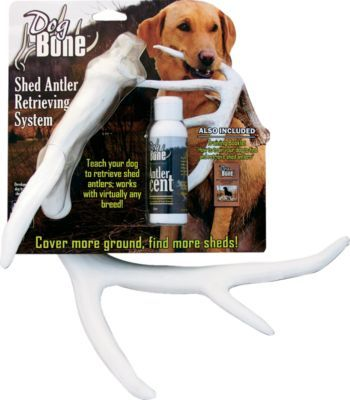 The Shed Antler Retrieving System Is A Great Way To Get Your Dog