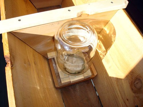 Inverted Jar Feeder Inside A Hive · Top Bar ...