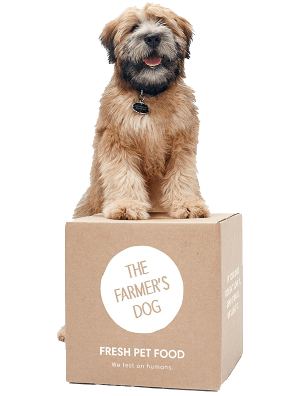 The Farmer's Dog Homemade Dog Food, Fresh & Delivered