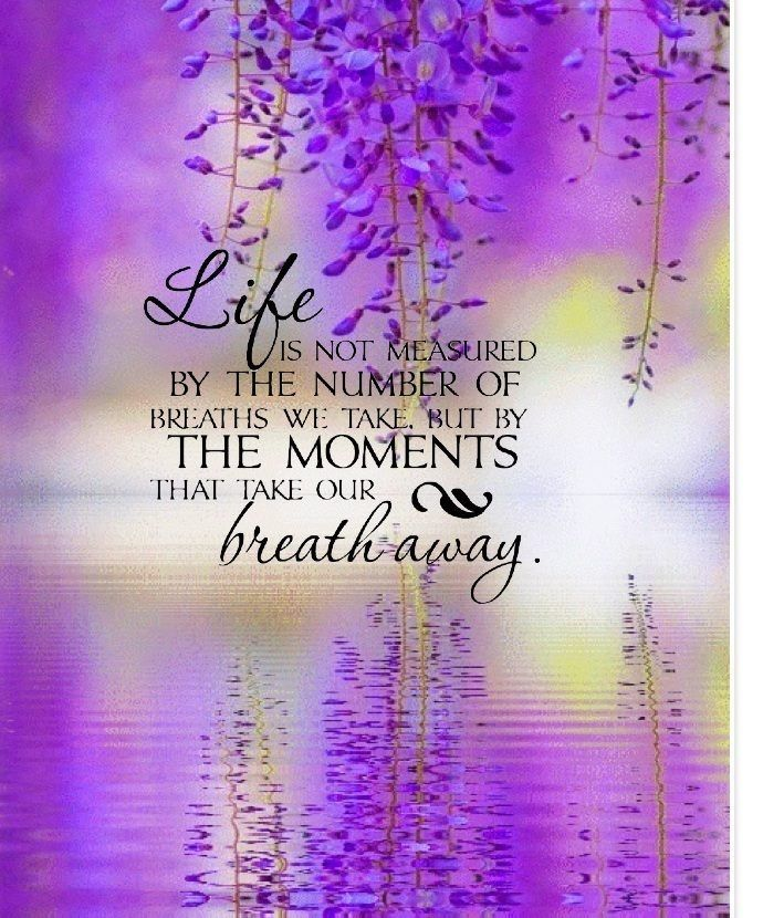 Life Is Not Measured Quote Life Lifequote Breathtaking Moments Inspiration Life Is Not Measured Quote