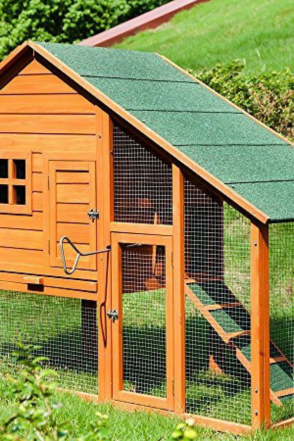 Backyard Chicken Coop Kit easy diy chicken coop ideas you should assemble for the backyard