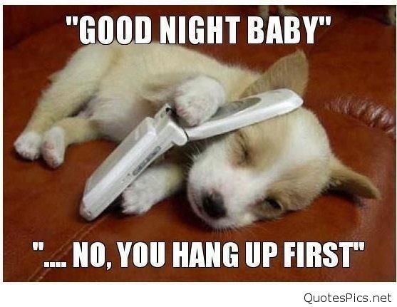 Funny Goodnight Memes For Him : Funny good night baby picture with a message for you