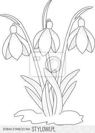 Przebisniegi Flower Drawing Floral Art Design Embroidery Patterns