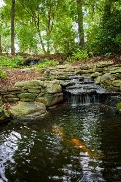 Water Features Water Features Wooded Landscaping Landscape Design