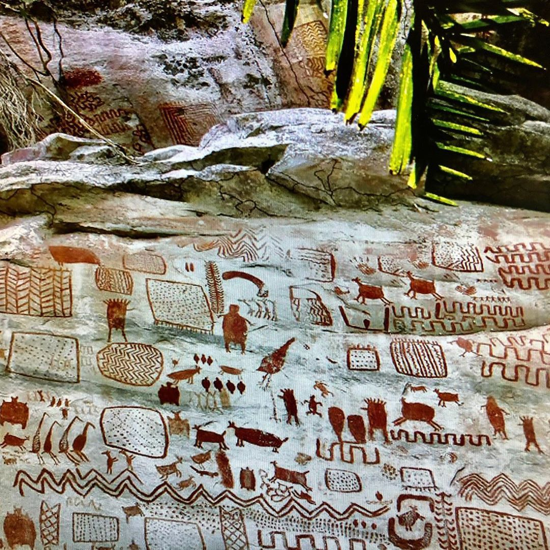 Bradshaw foundation on instagram the rock paintings in
