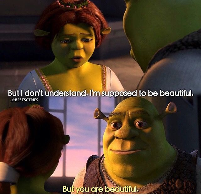 Pin By Timmy Auerbach On Movies Shrek Quotes Fiona Shrek Favorite Movie Quotes