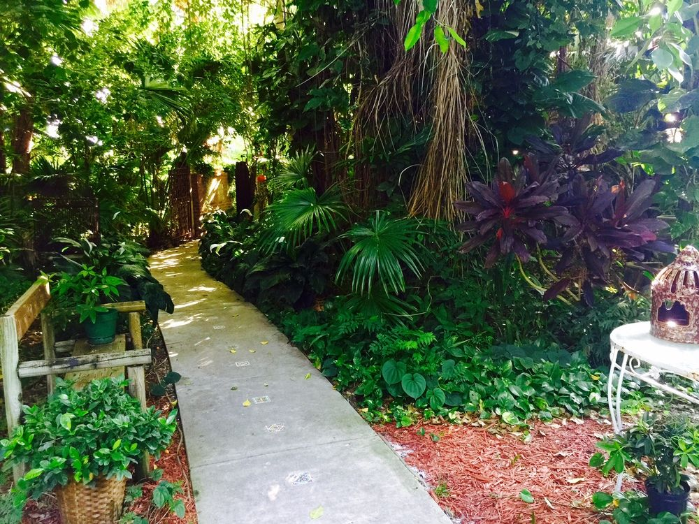 Our Favorite Secret Garden Southern WeddingsWedding RentalsWedding VenuesSecret GardensWedding DreamsVero Beach FloridaMimosasKnotCharlotte