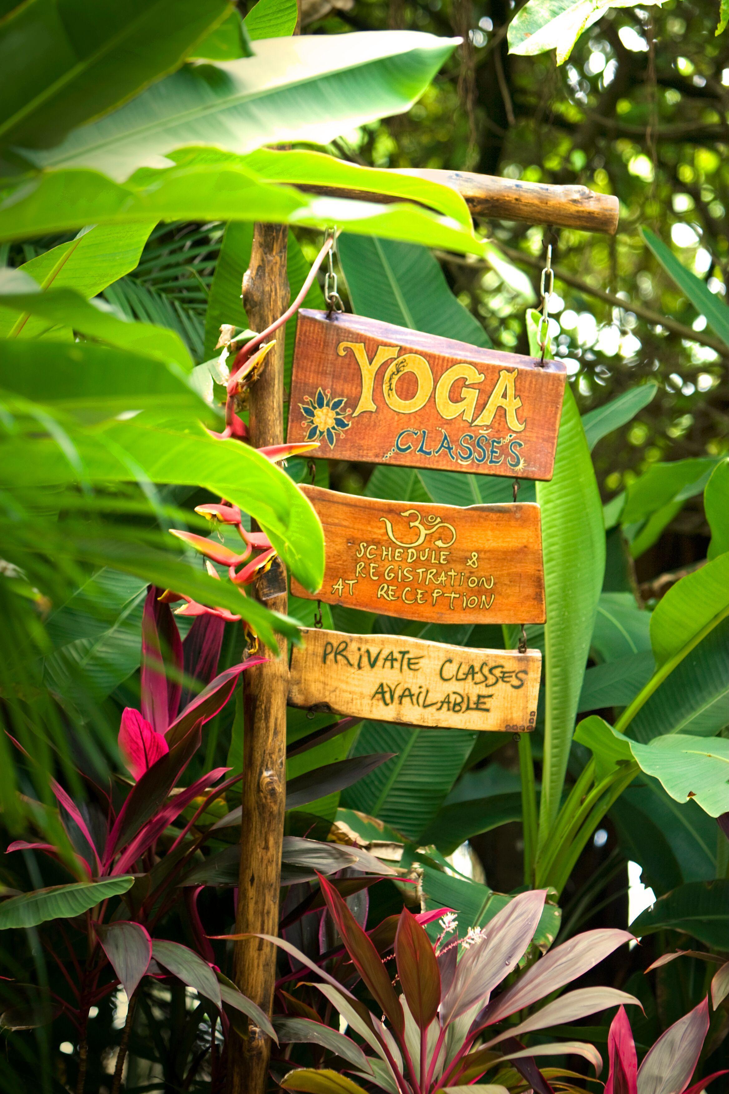 Santa Teresa Costa Rica Yoga Lessons.