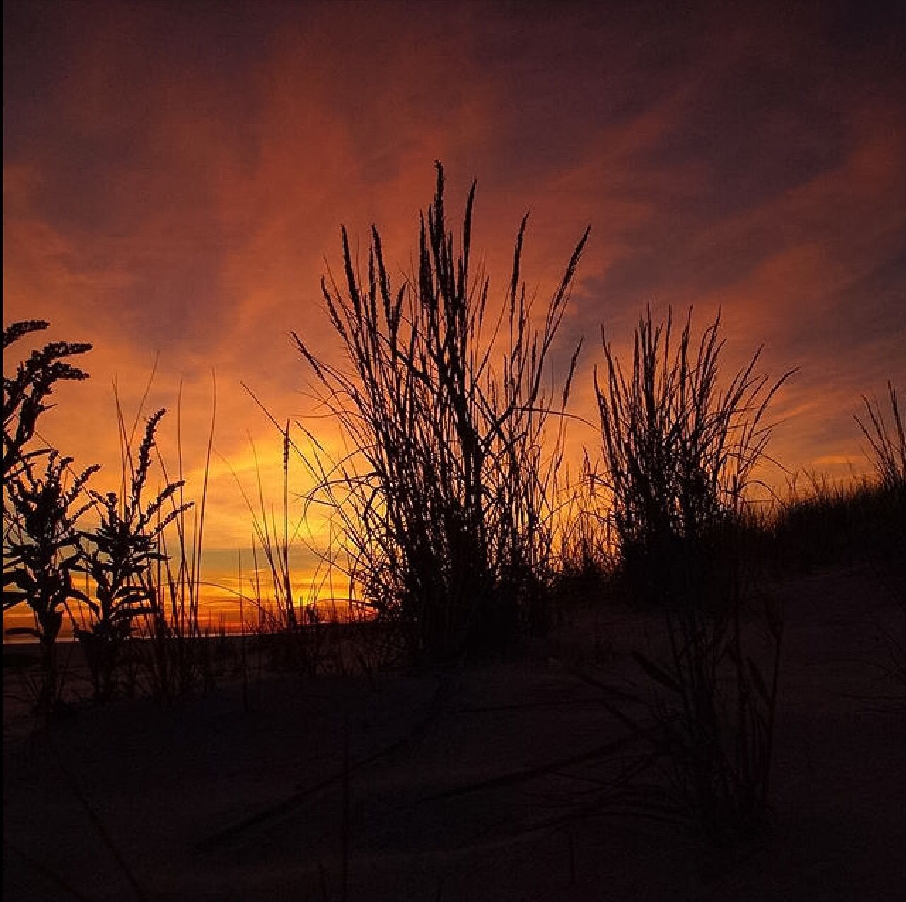 Cape May, NJ by Andy Steen