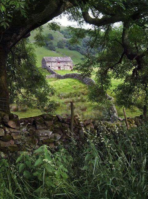 Linda Hanley - Google+ - Yorkshire, England