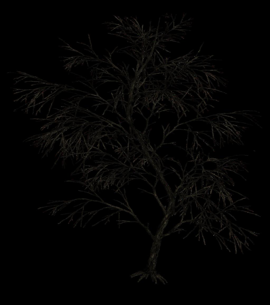 Dark Trees Png Stock 01 Dark Tree Tree Painting Tree Silhouette