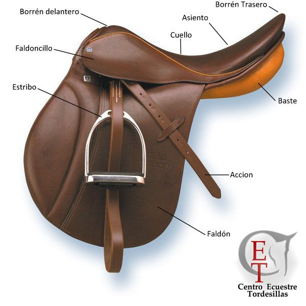 Caballos Bridas Y Bocados Buscar Con Google Horse Gear English Saddle Livestock Shelter