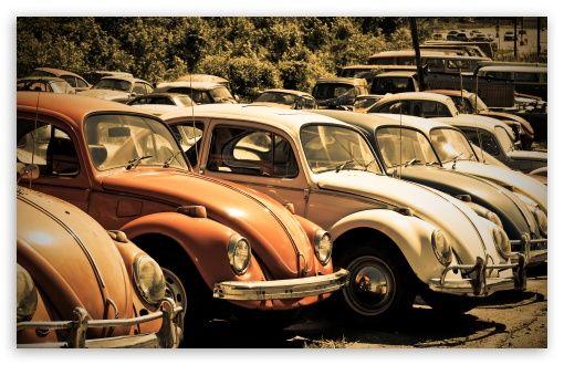 Old Volkswagen Beetle Junkyard wallpaper | It's Not Old
