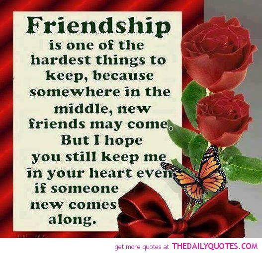 Quotes About Friendship Forever Magnificent Friendship Quotes  Friendship Quotes Friends Forever And Friendship