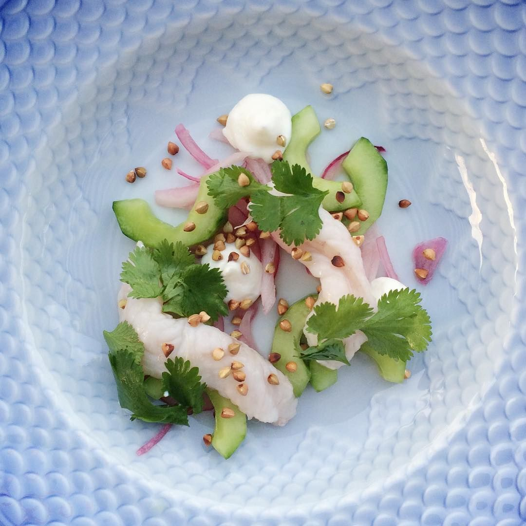 "Melsted x Frederik Bille Brahe på Instagram: ""Ceviche of monkfish with cucumber, fermented red onions, toasted buckwheat, strained yogurt and cilantro #summer #food #fish #bornholm #melstedxfbillebrahe"", Danmark"