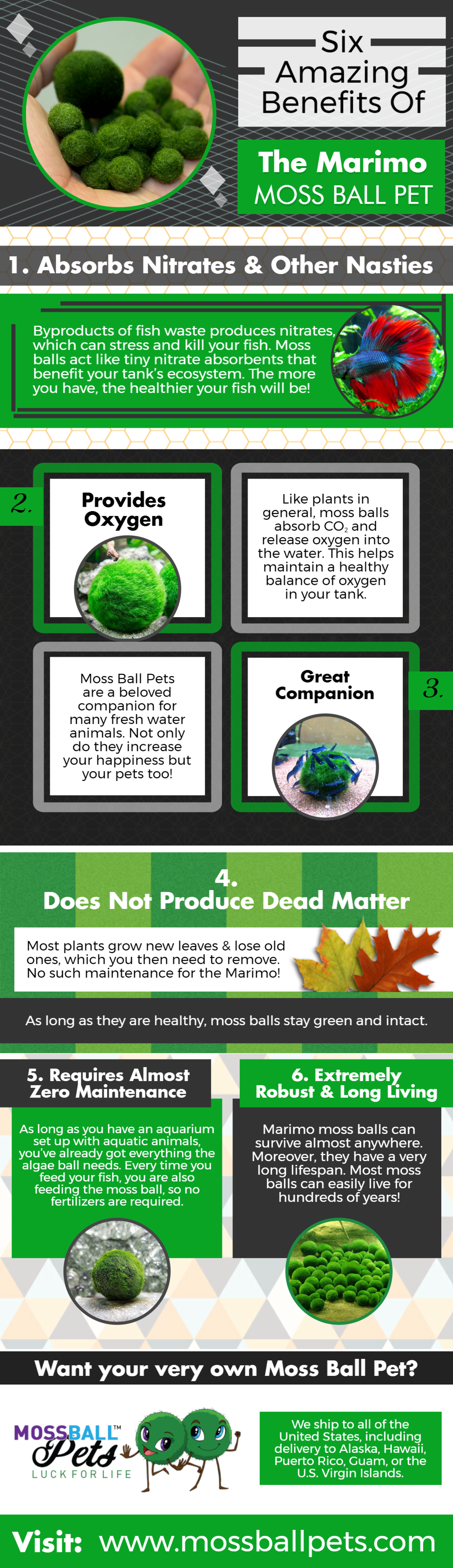 Six Amazing Benefits Of The Marimo Moss Ball Pet for more visit: https://mossballpets.com