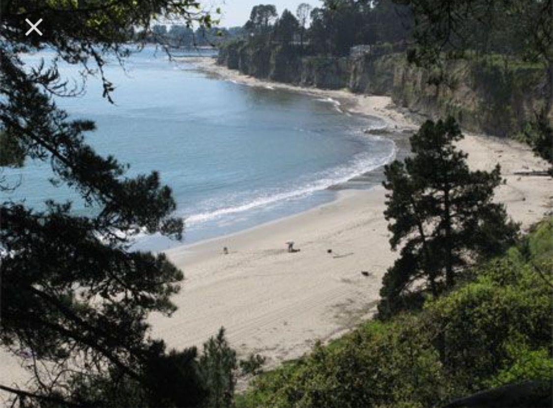 Camping In Santa Cruz Beach The Best Beaches World