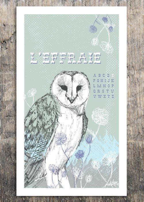 French Alphabet - LEffraie - Modern French Owl Print, bark ...