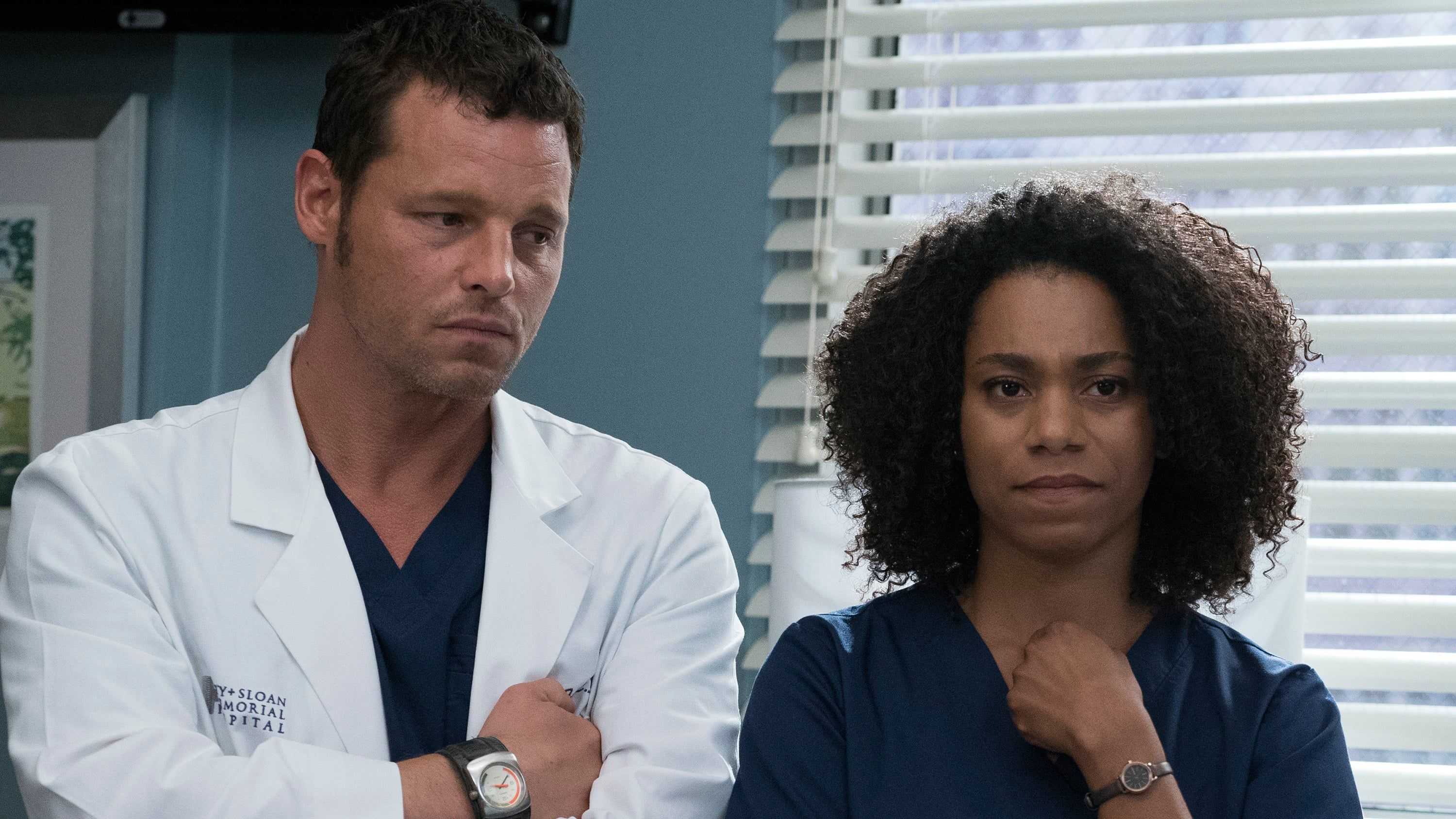 Grey\'s Anatomy - Season 14 Episode 4 : Ain\'t That a Kick in the Head ...