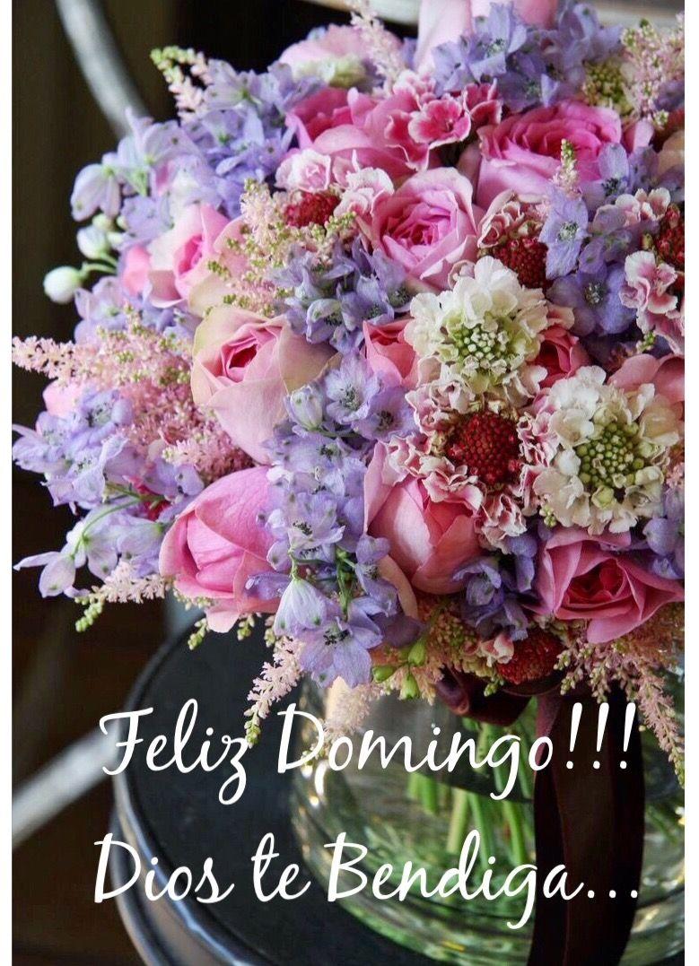 Feliz Domingo Feliz Da Domingo Sunday Happy Sunday Happy