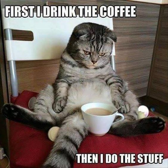 47 Funny Coffee Memes That Will Have You Laughing