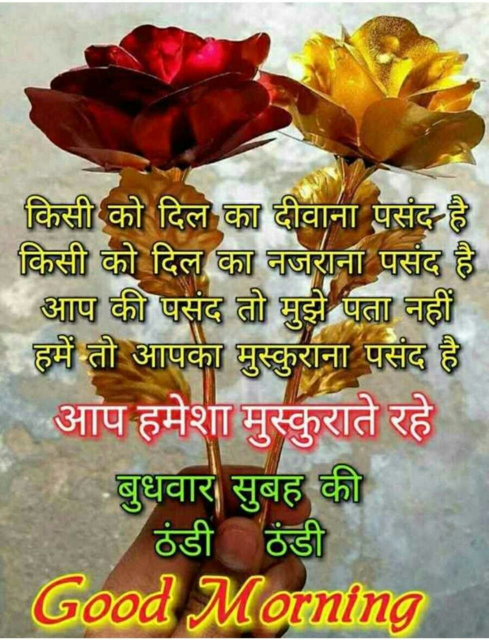 Pin by RADHIKA on Flowers   Morning greetings quotes, Good ...