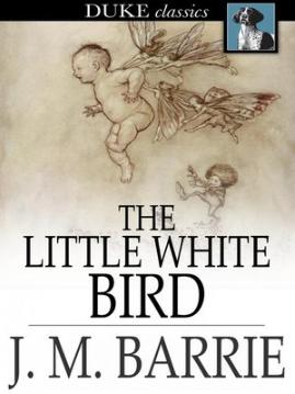f848e591abb1e7f94b2273be26255b61 - The Little White Bird Or Adventures In Kensington Gardens