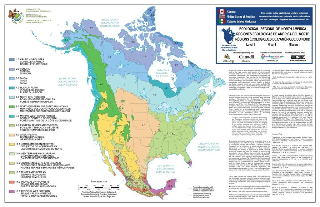 Ecological map of north america 5100x3300click here for more maps level i ecoregions of north america select map for larger pdf version gumiabroncs Gallery