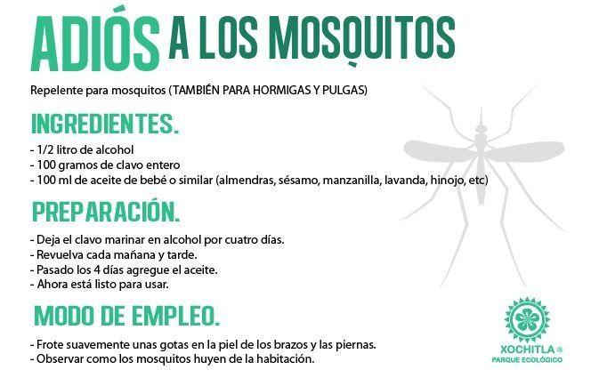 Repelente natural para mosquitos