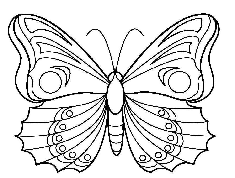 Papillon dessin recherche google design coloring pages - Papillon dessin couleur ...