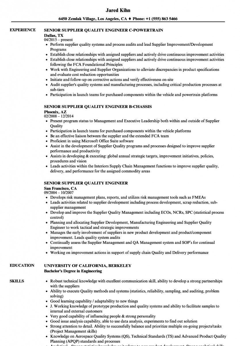 15++ Operations manager resume summary examples Format