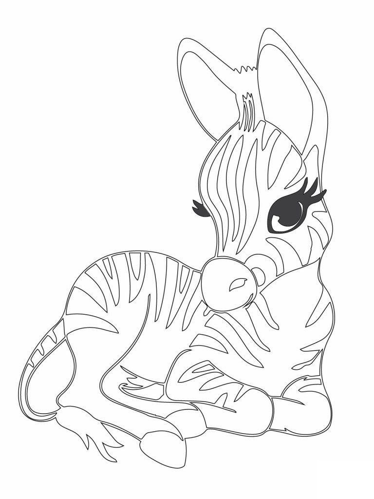 Pin by Coloring Fun on Animals | Pinterest | Baby zebra, Precious ...
