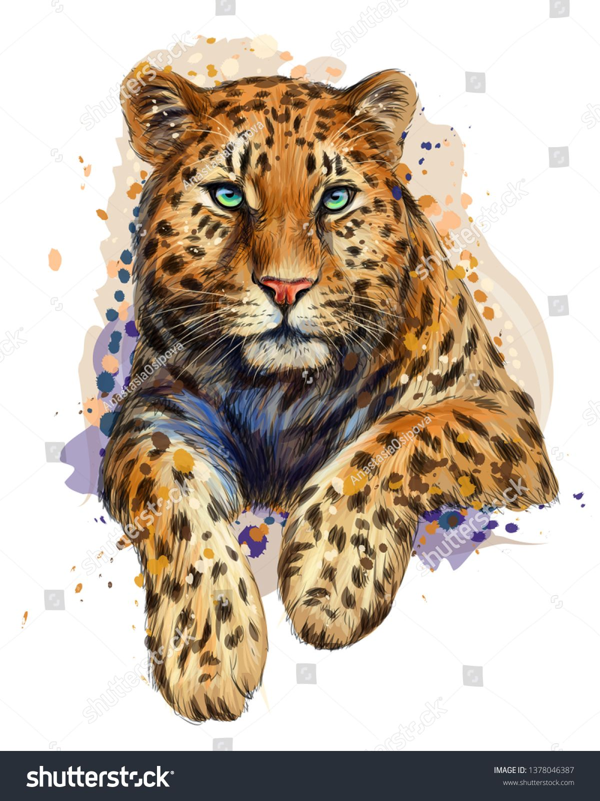 Leopard Jaguar Color Graphic Artistic Portrait Of A Leopard In A Picturesque Style On A White Background With Splashe Portrait Artist Jaguar Colors Artist