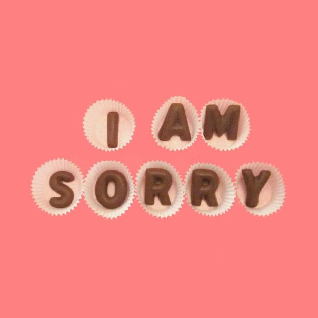 I Am Sorry Large Milk Chocolate Letters Great Cool Apology Gift