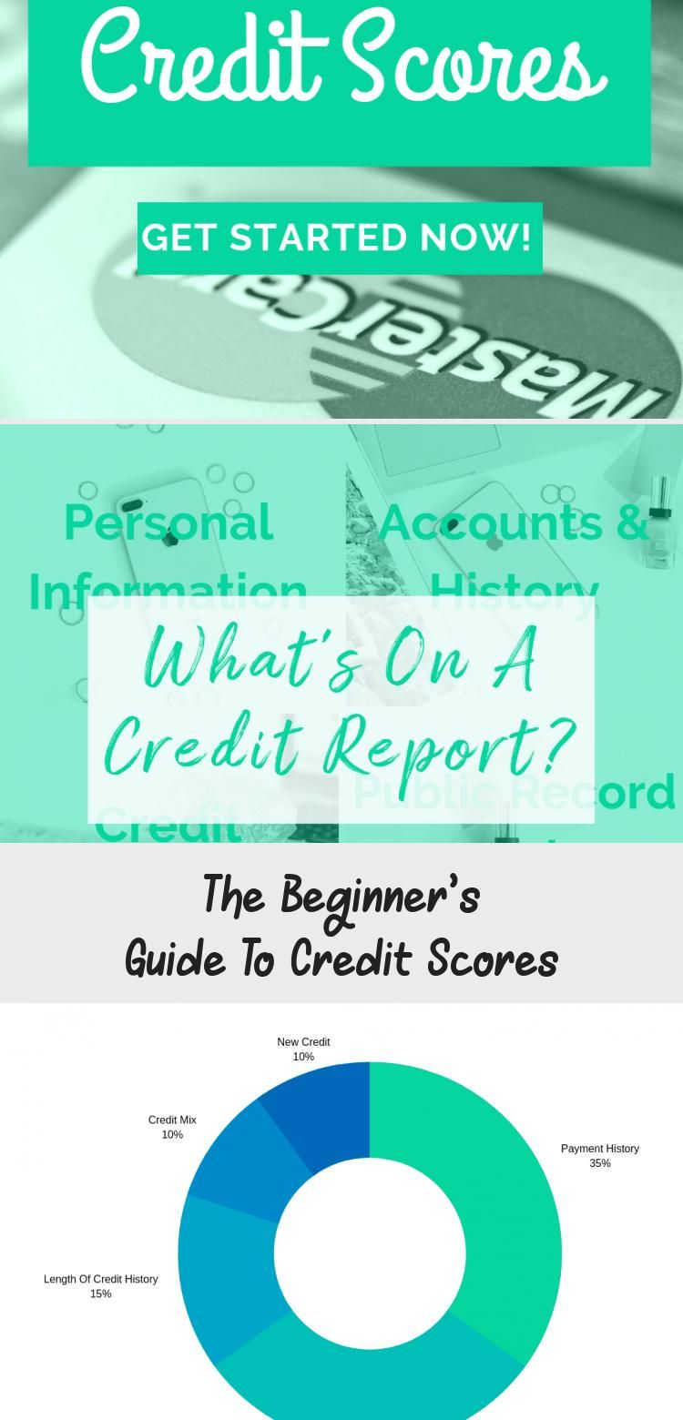 The Beginner S Guide To Credit Scores Credit Score Improve