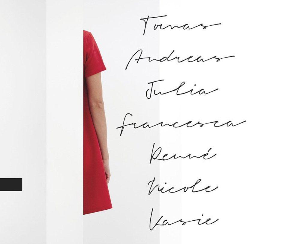 Signeton Signature Font Signature Fonts Beautiful Script Fonts Handwritten Script Font