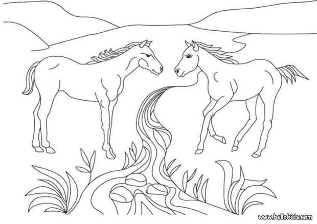 Two Horses Coloring Page Cute And Amazing Farm Animals For Kids More