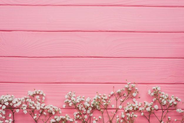 Baixe Superficie De Madeira Rosa Com Galhos Decorativos