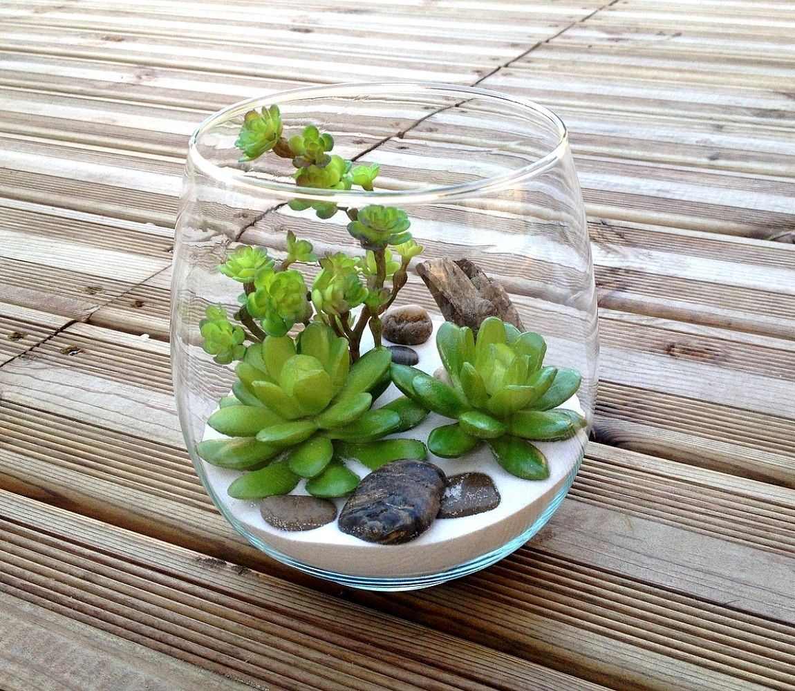 Terrarium plantes grasses artificielles h14 5 adele for Plante decorative exterieure