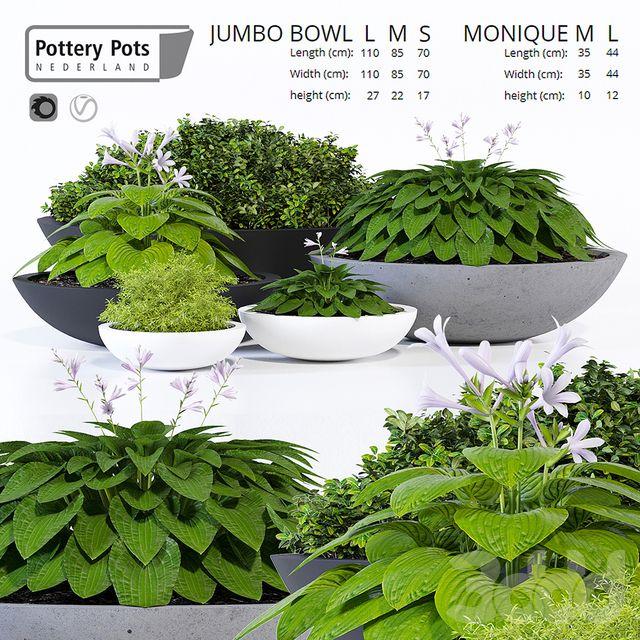 Potterypots twelve | Модели