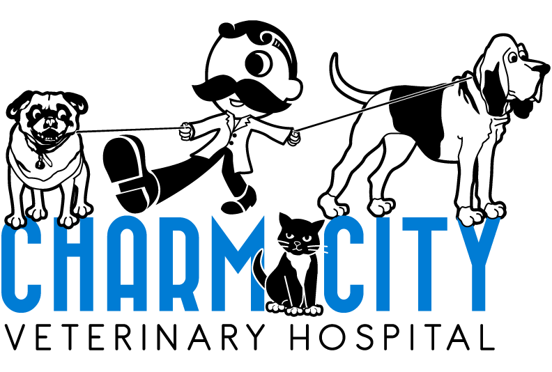 Welcome To Charm City Veterinary Hospital Veterinary Hospital Pet Vet Veterinary